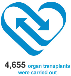 4,655 organ transplants were carried out