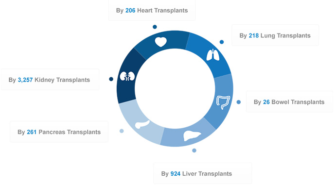 4,655 organ transplants were carried out, from 2,466 generous deceased and living donors � here is a breakdown by organ type